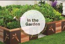 In the Garden / Images and tips from Kevia's personal garden and garden inspiration. #garden #gardenart #organic #organicgarden #flowers #gardendesign