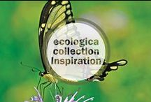 Ecologica Collection Inspiration / Jewelry from Kevia's ecologica collection and the endangered species that inspired it. Improve your global footprint by purchasing Kevia jewelry made from all sustainable materials, and Kevia will donate a portion of the proceeds to national and international conservation efforts.