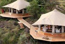 Honeymoon in Africa