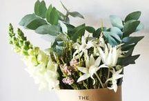 Flowers: Blumen-Liebe / So schön sind Blumen: Ob im Garten oder als Strauß, wild, bunt oder ganz schlicht - mit Blumen ist das Leben schöner!