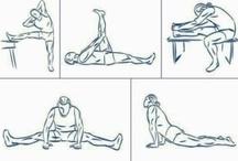 STRETCHING / Nella sezione Documentazione del sito è stato pubblicato un articolo che esamina lo stretching.