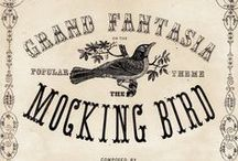 *TYPOGRAPHY* / by The Vintage Paper Bird
