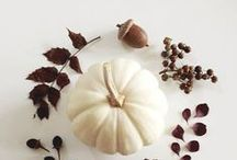 Seasons | Fall / Decoration, Ideas, Moods and Food for Fall