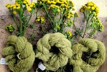 Ecodye / Natural and sustainable dyeing