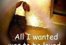 Animal Rescue Awareness / The Joshua Fund firmly believes that all animals deserve to be loved! We treat all of our pets like the family members that they are! Visit our website to learn more about us: http://www.joshuafundinc.org