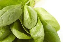 Salad Greens 101 / by Marzetti Kitchens
