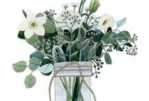 Botanical Illustration / by Sandra Nascimento