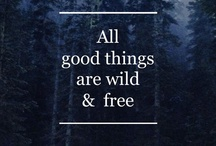 words [inspirational phrases]