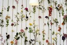 Arte floral / Floral art