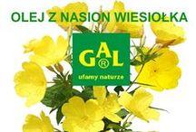 Wiesiołek w produktach GAL / Suplementy i kosmetyki GAL zawierające wyciąg z oleju z nasion wiesiołka.