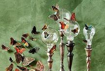 Sommerfugle Butterflys ~