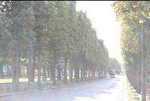 DakarEcho in Paris / Sightseen In Paris