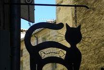kattedingen / allerlei dingen over en voor katten