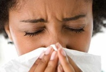 Clean Home Allergy Solutions