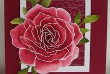 Cards / by Jacquie Taylor