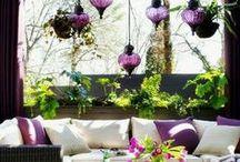 Terrace & Patio Ideas