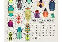 Calendar D e s i g n Ideas