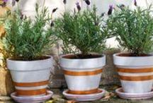 ΒΑΨΙΜΟ: ΓΛΑΣΤΡΕΣ / Painted pots