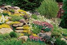 ΒΡΑΧΟΚΗΠΟΙ / Rock Garden ideas