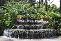 My secret garden / Dream Gardens and Outdoor areas.