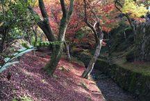 fushimi(京都市伏見区)