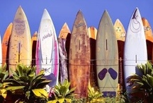 Tropical Island Fun! / Kaua'i offers something for anyone who likes to play outdoors!!! From ocean sports, hiking, swimming, surfing, SUP, fishing, boating, body boarding or even just sun bathing!