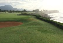 Kauai Golf / Come play a world class Kaua'i course! Great views, challenging courses, wonderful climate and a bit of wind to add some interest to your game.. The prince course is in the top 100 courses in the world for golf!