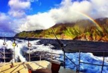 ActivityKauai.com Tours / Check out the highest quality Kaua'i tour outfits. Let our tool help plan your family, honeymoon, or corporate event. Exceptional customer service, 7 days a week, is only a phone call away. We look forward to being 'your source for all things Kaua'i'. Give us a call today 800-380-KAUAI(5282)