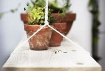 Planten 'hangout' / Een leuke 'hangplek' voor je planten