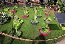 Beurs Floraliën / De Nederlandse Floraliën biedt volop inspiratie op bloemen en planten gebied.