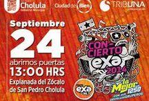 Rueda de Prensa Concierto Exa 2014 / ¡El mejor concierto del año se acerca con artistas invitados como OV7, Sandoval, Los Ángeles Azules, CD9, entre otros!