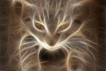 Fractal cats / Vakker fantasy kunst av kattunge