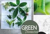 Green Treasures / Green is not just a colour
