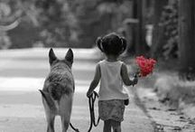 Dogs and Kids / Kids' best friends!!!