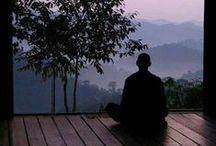 Martial Arts - Robert Kwok / The Art Of Yin & Yang