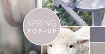 Spring pop-up