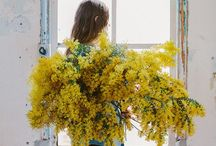 Flowers / Beautiful florals,inspirational nature.