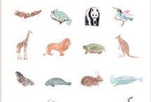 동물/곤충