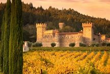 Castles / Italy, France, United Kingdom, Germany, Romania, Hungary, Netherlands, Denmark, Spain