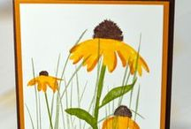Inspired by Nature - Stampin Up