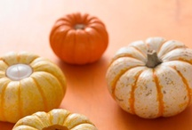 Pumpkin. Mmmm. / All things pumpkin. Recipes, crafts and more. Or maybe just recipes and crafts! ;) / by Misty Benz-Bushling