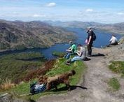 Doggy days out - The Trossachs! / Pictures of my day trip to the Trossachs and Ben A'an