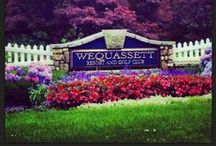 Wequassett Resort and Golf Club / Goldie's Golf Getaways July 18, 2013 ~ Snuggled on 27 acres of prime Cape Cod waterfront on Pleasant Bay, the Wequassett is the Cape's only Four-Star Four-Diamond Resort!  Artistically designed seascape flora and fauna surround 4 acclaimed restaurants, 2 pools, Hard Tru Tennis Courts and one of a kind Kids activities ~ perfect for making lifetime memories!  Overnight guests of the Wequasset Resort are granted playing privileges at the exclusive Cape Cod National Golf Club! www.wequassett.com