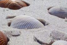Summerish ! / #sea #beach #relax #sunbathing #deepbluesea #holidays #love #flirting