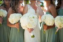 Sage / Beautiful soft sage colours for your special day http://www.careysmanor.com/wedding_package_offers.html