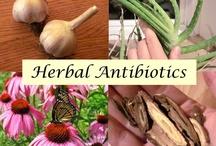 Health, Remedies & Making Medicine  / Herbal Medicine & Essential Oils