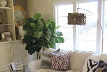 Living room decor / by Melissa Goad