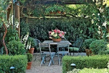 Pergola Plantings / Dreams of a secluded backyard garden retreat start with ideas and pinspiration!