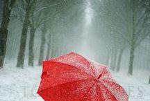 UMBRELLA'S, PARASOLS & BALLOONS / Umbrella's & Parasols