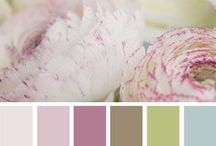 HOME: Colour Schemes / Matching Colours to Decorate